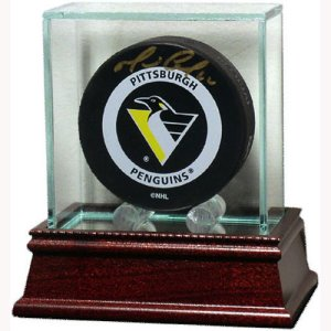 Hockey Puck Single Glass Display Case