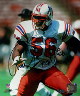Andre Tippett signed New England Patriots 8x10 Photo- Steiner Hologram