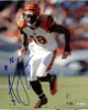 AJ Green signed Cincinnati Bengals 8x10 Photo