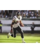 Arian Foster signed Houston Texans 16X20 Photo- JSA Hologram