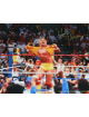 Hulk Hogan signed Wrestling 16x20 Photo (WWF/WWE/WCW)