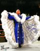 Ric Flair signed Wrestling 16x20 Photo 16X (blue robe/WWF/WWE/WCW/NWA/TNA)