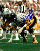 LC Greenwood signed Pittsburgh Steelers 8x10 Photo (white jersey jersey-above sig)