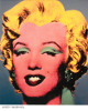 Marilyn Monroe unsigned Vintage Color 8x10 Poster Card/Photo (Andy Warhol)