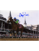 Barbaro signed Kentucky Derby Horse Racing 8x10 Photo- Mounted Hologram