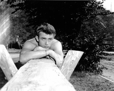 James Dean unsigned Vintage B&W 8x10 Photo (arms on wood)