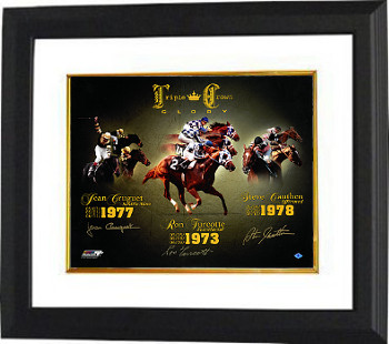 Affirmed signed Triple Crown Glory Horse Racing 16X20 Photo Custom Framed- 3 sigs