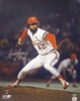 Bruce Sutter signed St. Louis Cardinals 16x20 Photo HOF 06 (1982 World Series)