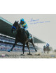American Pharoah signed 16X20 Photo 2015 Belmont Stakes Horse Racing Triple Crown Winner with Victor Espinoza-Steiner Holo