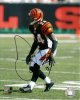 Deltha O'Neal signed Cincinnati Bengals 8x10 Photo